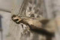 eglise exterieur (12)